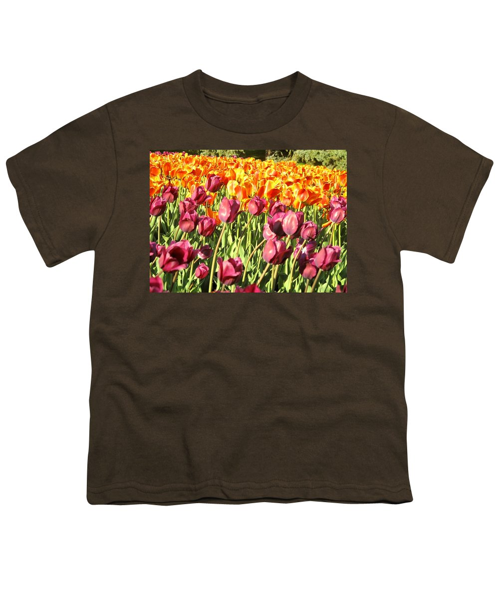 Tulips Youth T-Shirt featuring the photograph Lots Of Tulips by Ian MacDonald
