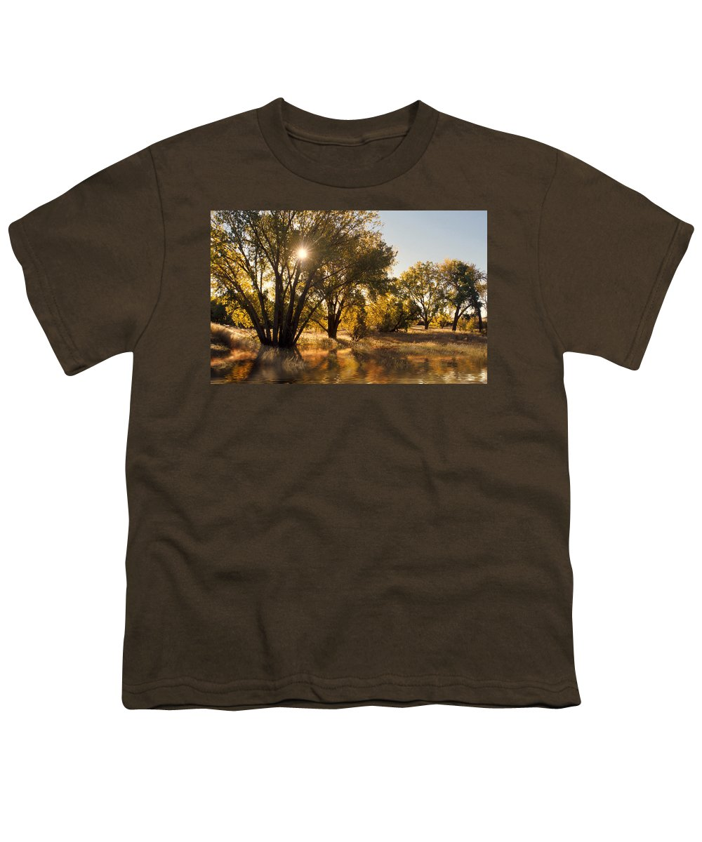 Ftrees Youth T-Shirt featuring the photograph Oliver Sunbursts by Jerry McElroy