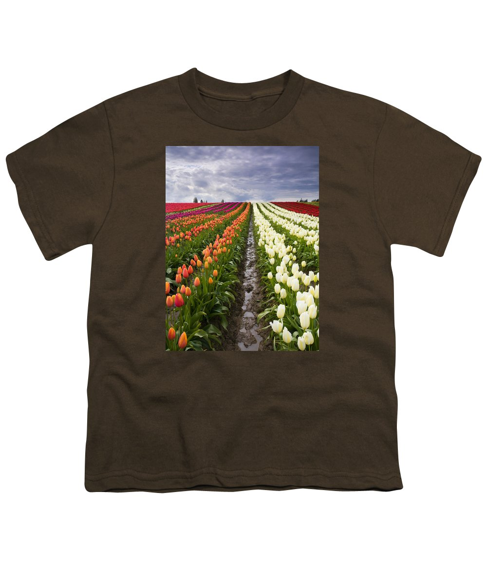 Tulips Youth T-Shirt featuring the photograph Sea Of Color by Mike Dawson