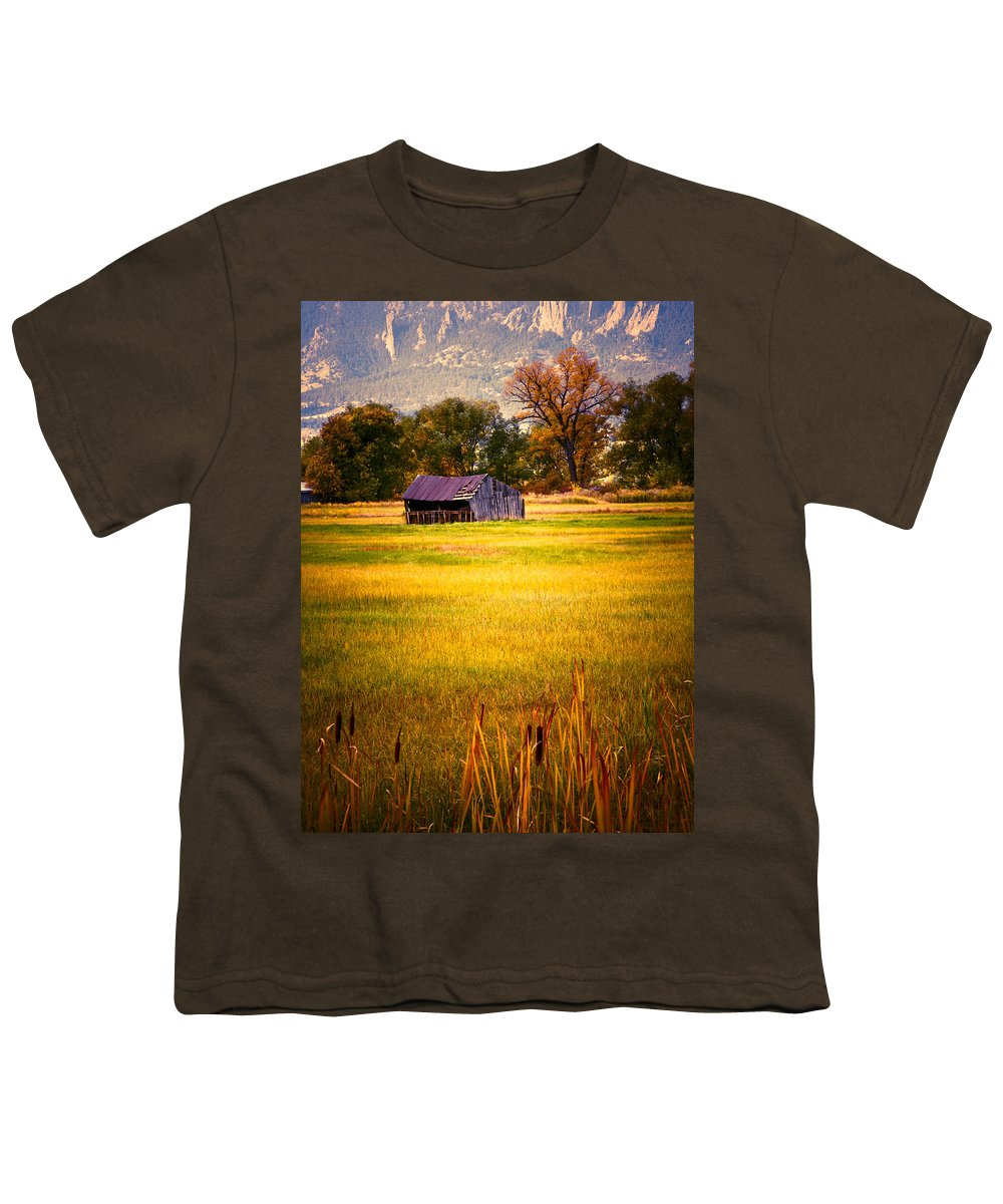 Shed Youth T-Shirt featuring the photograph Shed In Sunlight by Marilyn Hunt