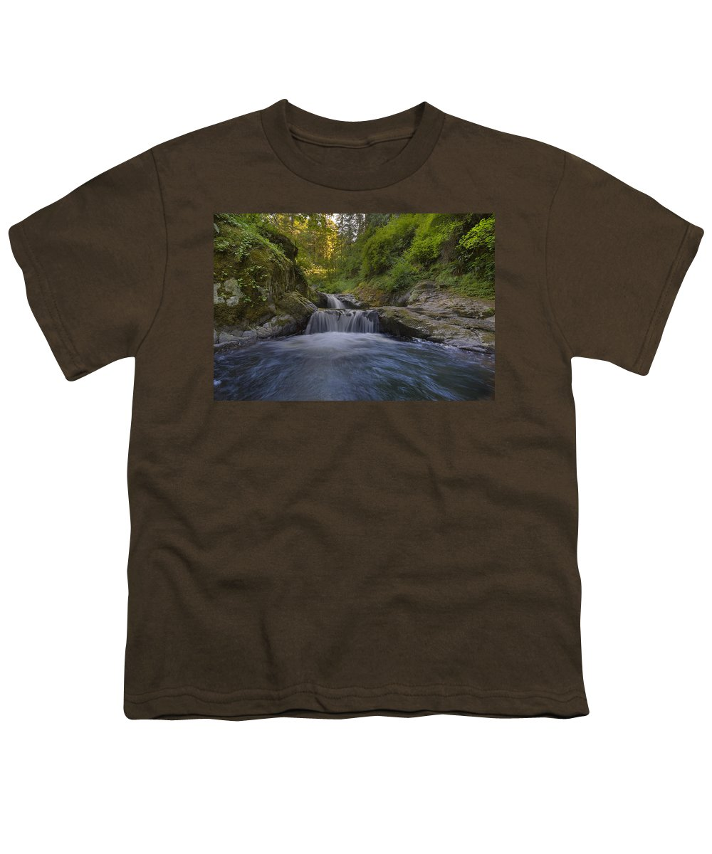 Sweet Creek Falls Trail Complex Youth T-Shirt featuring the photograph Sweet Little Waterfall by David Gn