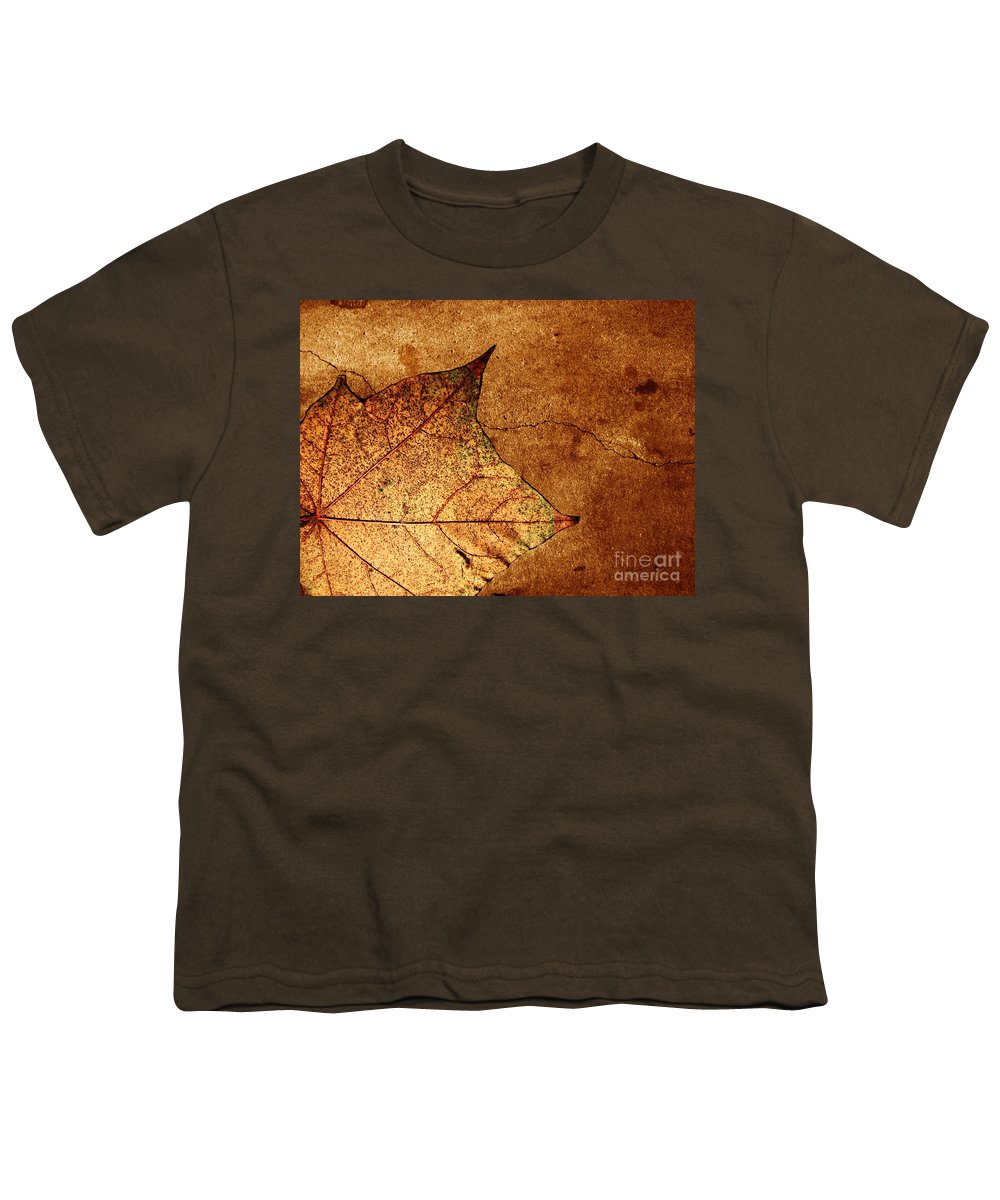 Autumn Youth T-Shirt featuring the photograph Today Everything Changes by Dana DiPasquale
