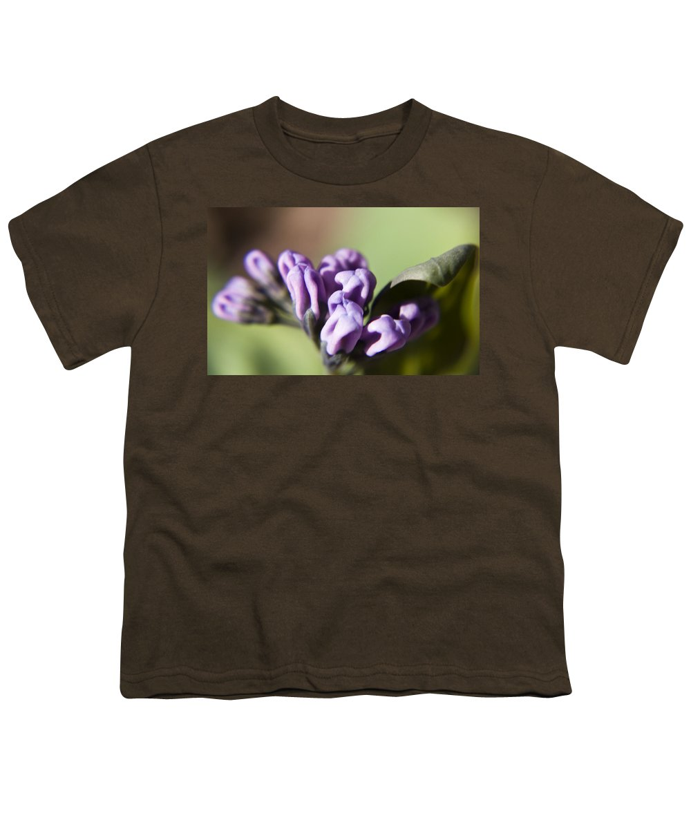 Virginia Youth T-Shirt featuring the photograph Virginia Bluebell Buds by Teresa Mucha