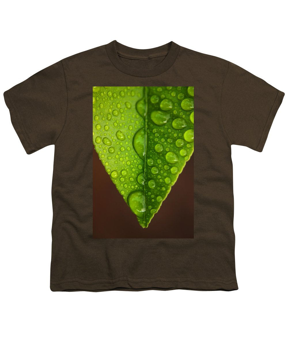 Leaf Youth T-Shirt featuring the photograph Water Droplets On Lemon Leaf by Ralph A Ledergerber-Photography