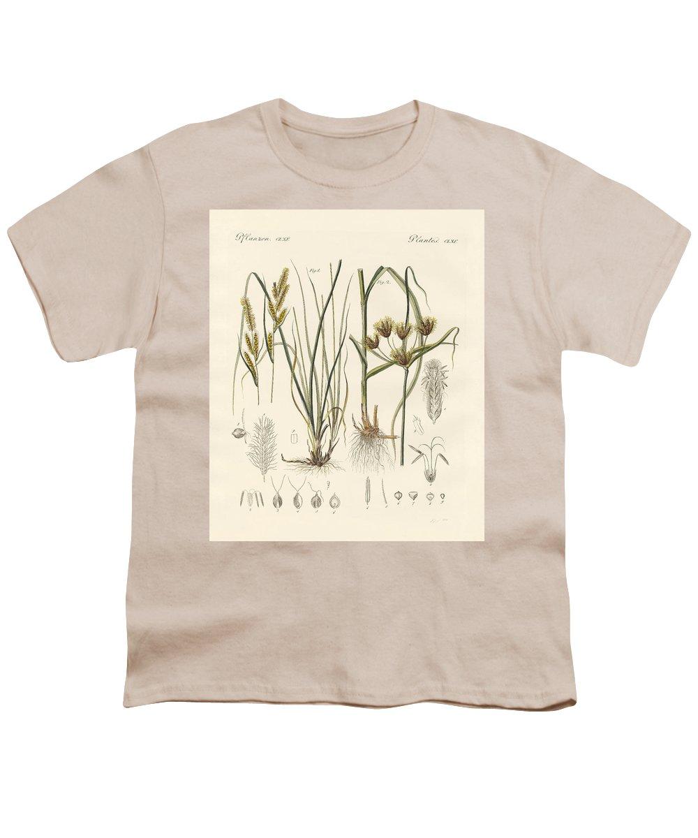 Sea Grass Youth T-Shirts