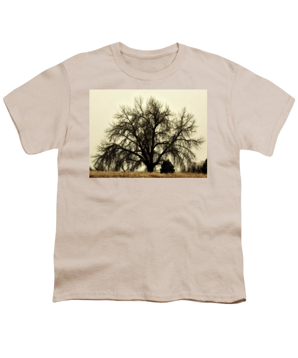 Tree Youth T-Shirt featuring the photograph A Winter's Day by Marilyn Hunt