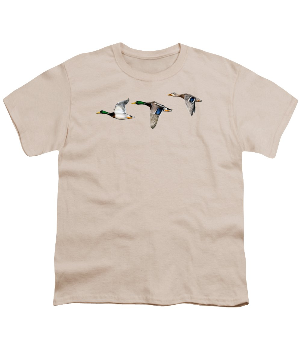 Geese Youth T-Shirts