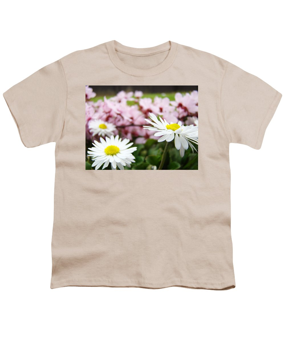 Daisies Youth T-Shirt featuring the photograph Daisies Flowers Art Prints Spring Flowers Artwork Garden Nature Art by Baslee Troutman