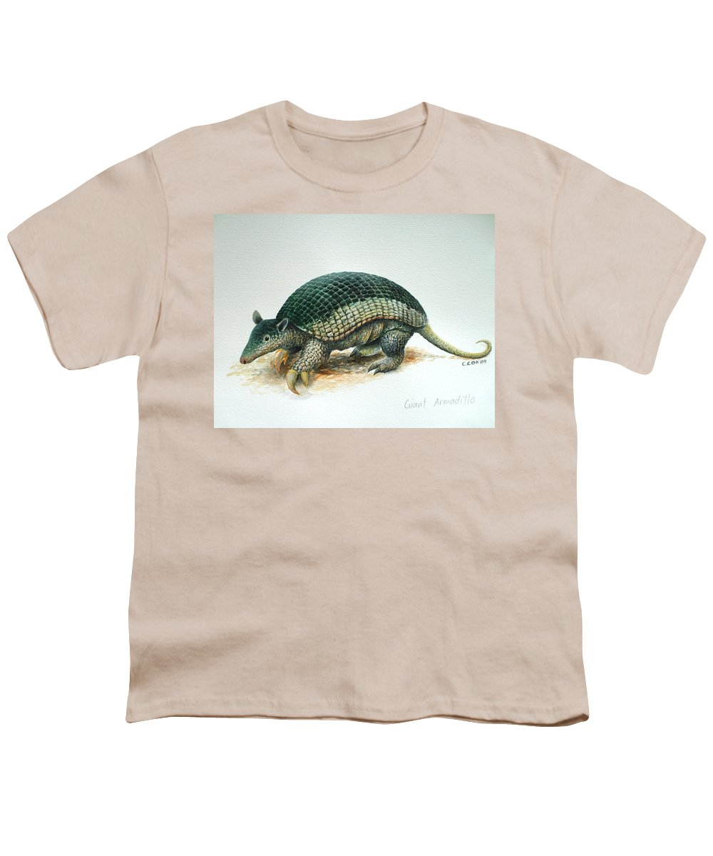 Giant Armadillo Youth T-Shirt featuring the painting Giant Armadillo by Christopher Cox