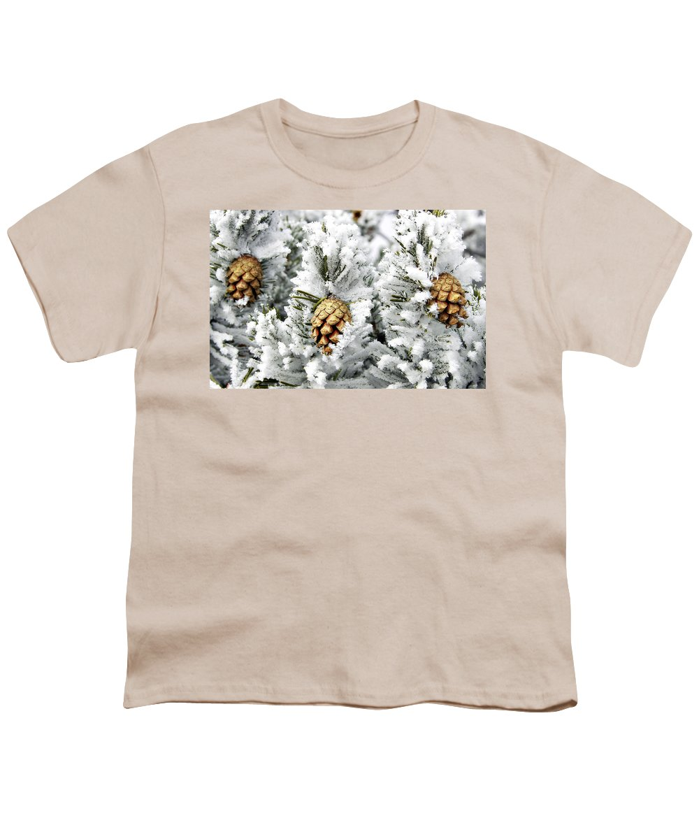 Frosty Youth T-Shirt featuring the photograph Three Pinecones by Marilyn Hunt