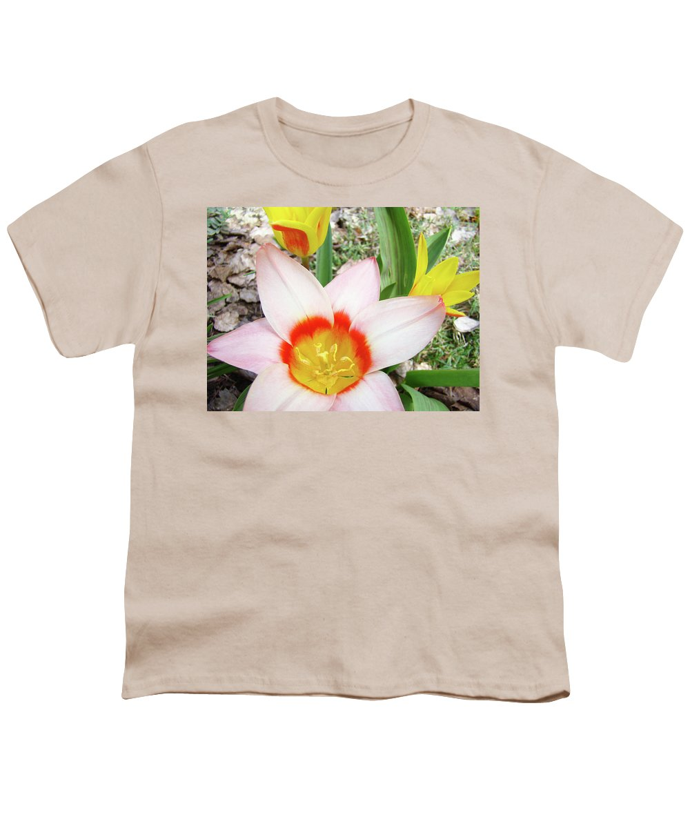 �tulips Artwork� Youth T-Shirt featuring the photograph Tulips Artwork 9 Spring Floral Pink Tulip Flowers Art Prints by Baslee Troutman