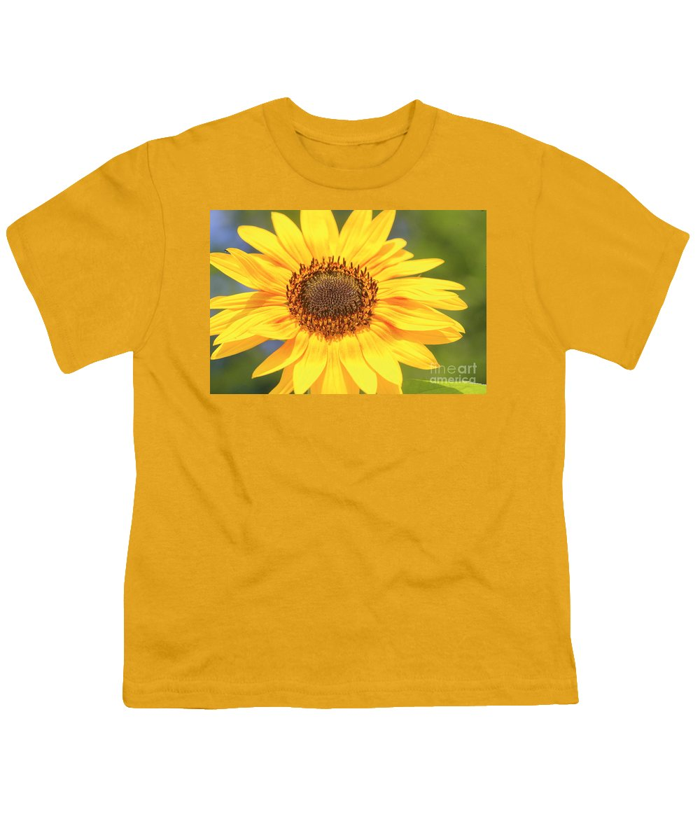 Flower Youth T-Shirt featuring the photograph Aburst Of Yellow by Robert Pearson