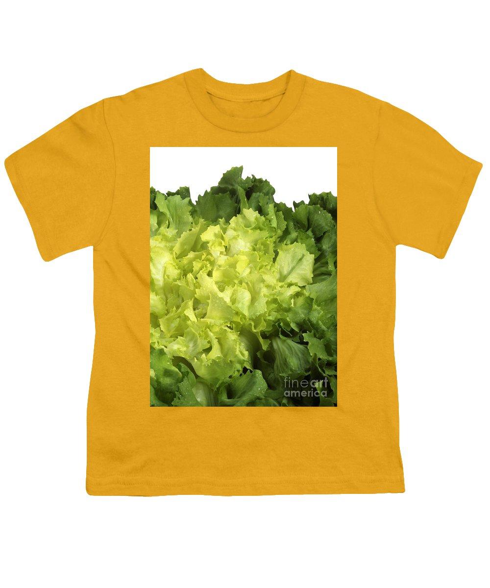 Cichorium Youth T-Shirts