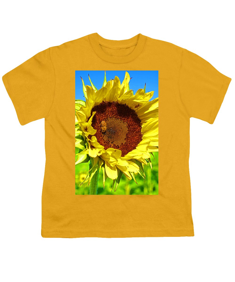 Pastoral Youth T-Shirt featuring the photograph Sunflower And Bee by Heather Coen