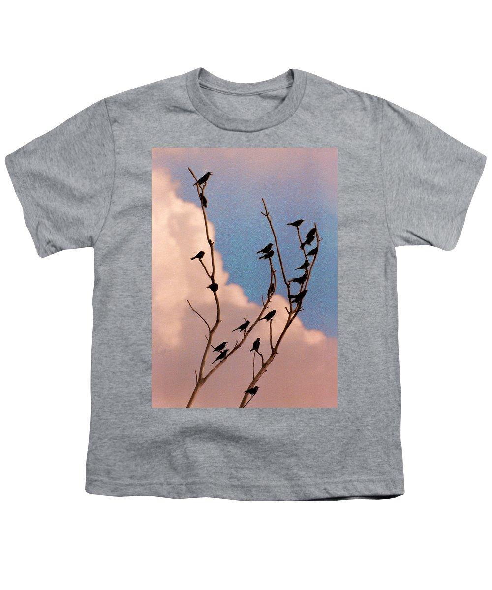 Birds Youth T-Shirt featuring the photograph 19 Blackbirds by Steve Karol