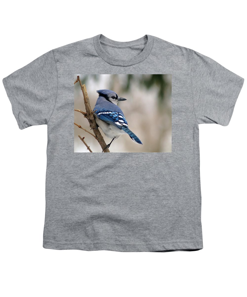 Blue Jay Youth T-Shirt featuring the photograph Blue Jay by Gaby Swanson