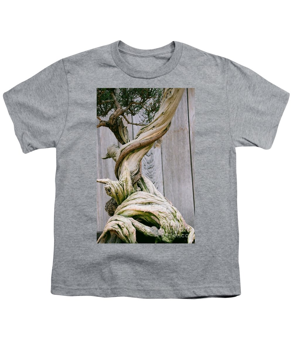 Tree Youth T-Shirt featuring the photograph Bonsai by Dean Triolo
