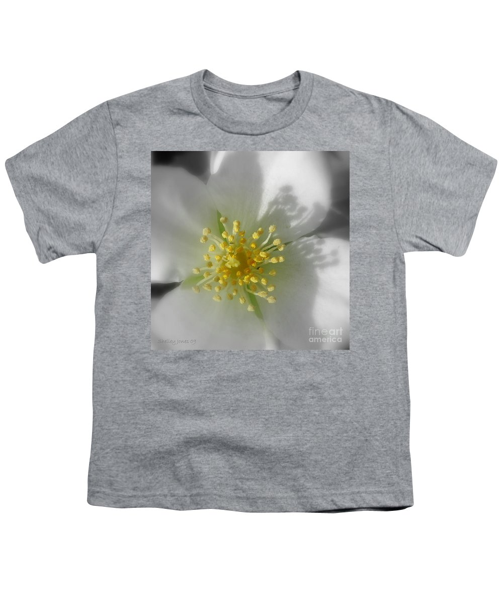 Photography Youth T-Shirt featuring the photograph Dogwood by Shelley Jones