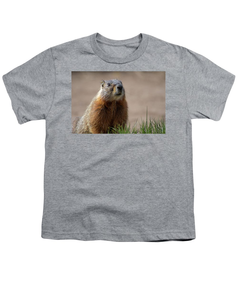 Wyoming Youth T-Shirt featuring the photograph Fearless by Frank Madia