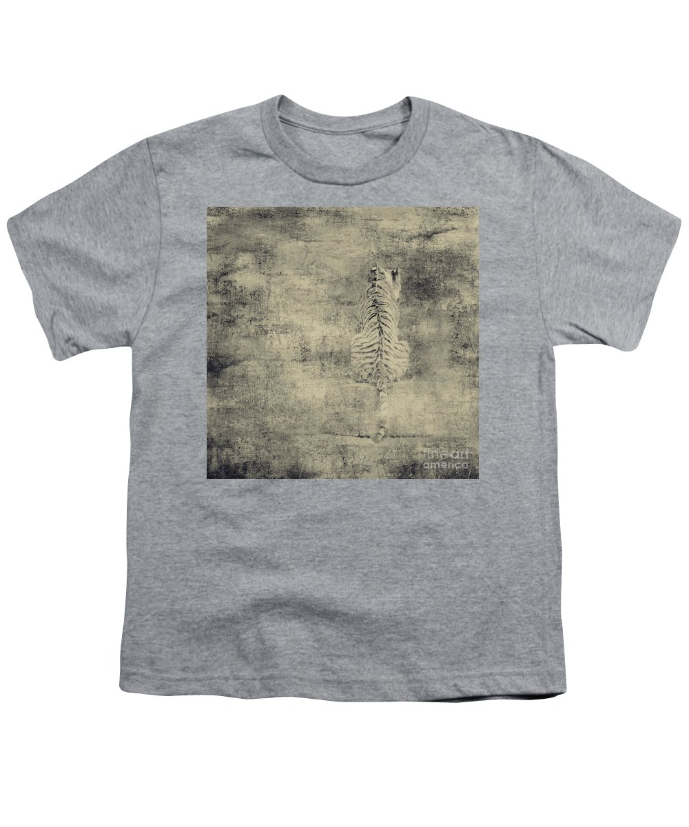 Dipasquale Youth T-Shirt featuring the photograph Have You Comprehended... by Dana DiPasquale