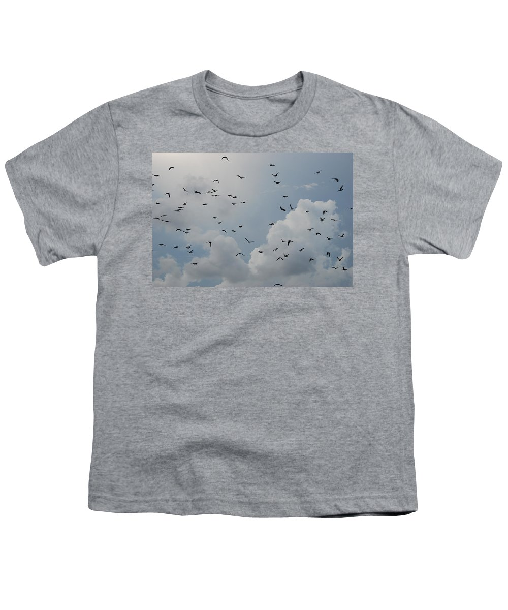 Birds Youth T-Shirt featuring the photograph In Flight by Rob Hans
