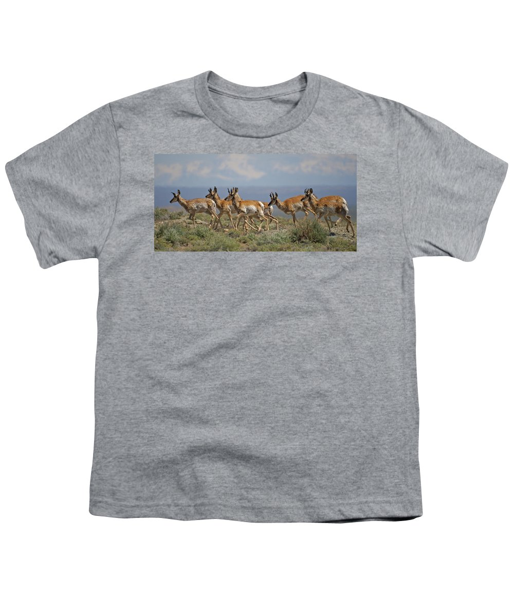 Pronghorn Youth T-Shirt featuring the photograph Pronghorn Antelope Running by Heather Coen