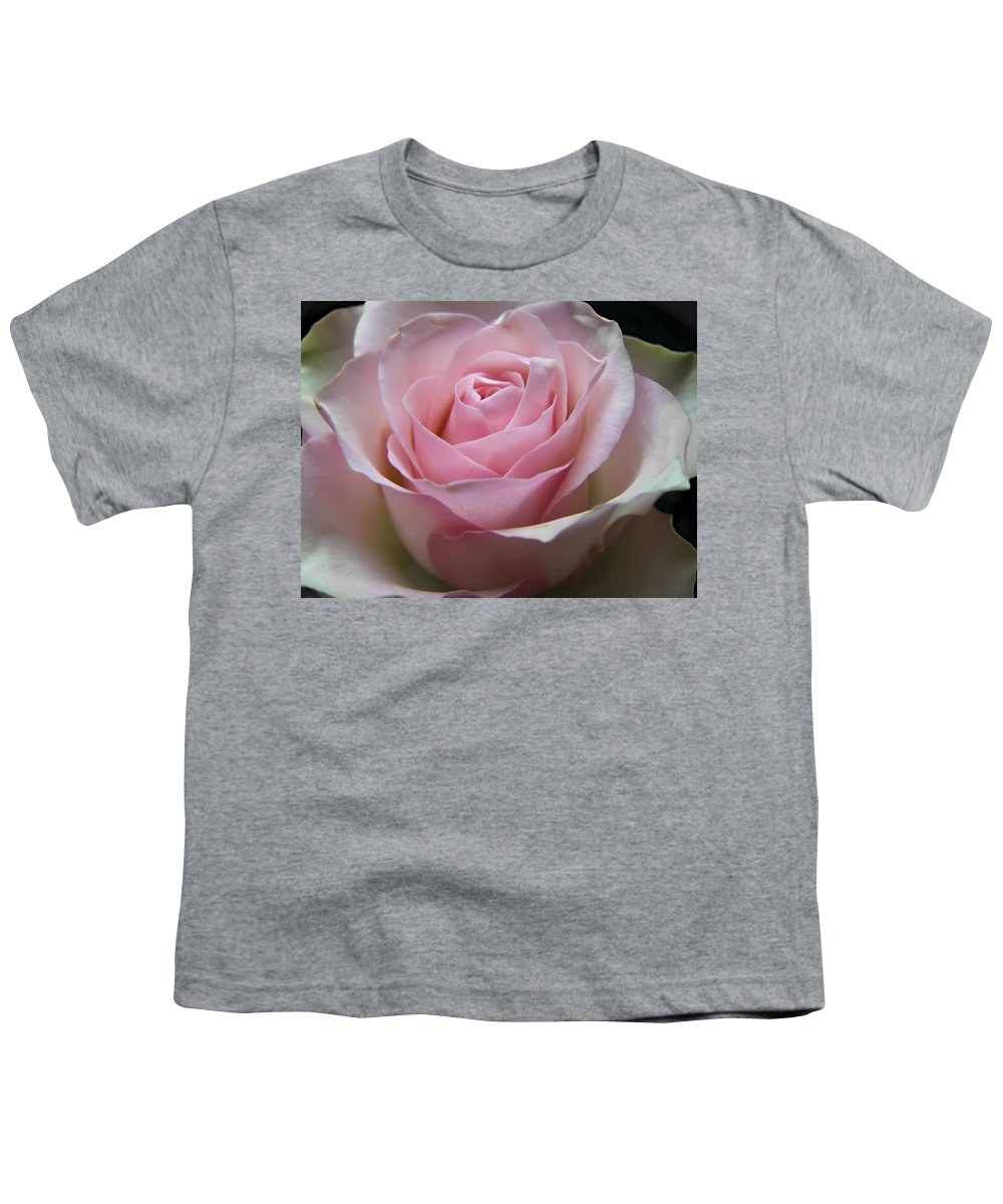 Rose Youth T-Shirt featuring the photograph Rose by Daniel Csoka