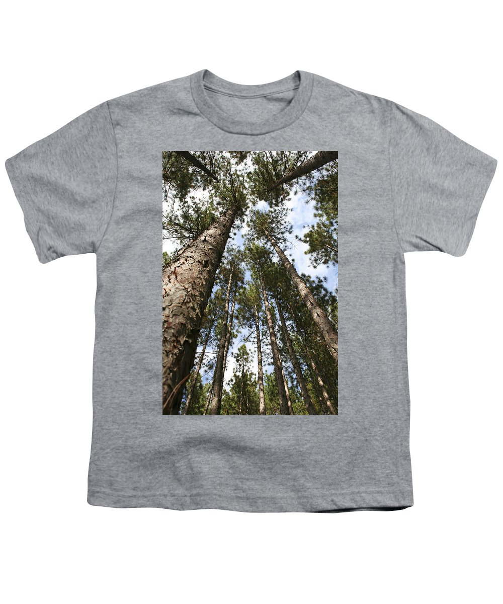 Autumn Youth T-Shirt featuring the photograph Tree Stand by Margie Wildblood