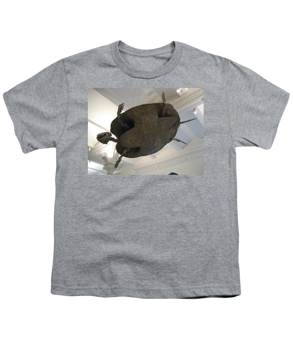 Turtle Youth T-Shirt featuring the photograph Turtle by Brian McDunn