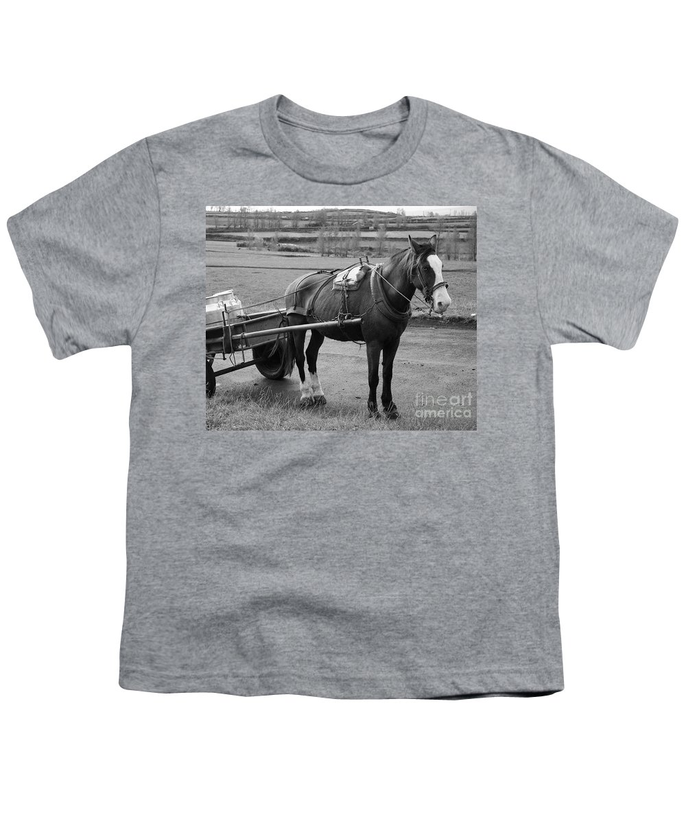 Cart Youth T-Shirt featuring the photograph Work Horse And Cart by Gaspar Avila