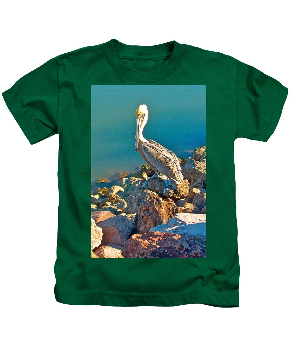 Brown Pelican In San Carlos Kids T-Shirt featuring the photograph Brown Pelican In San Carlos-sonora by Ruth Hager