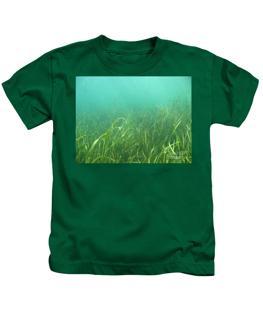 Freshwater Kids T-Shirt featuring the photograph Shallow Freshwater Lake by Ted Kinsman