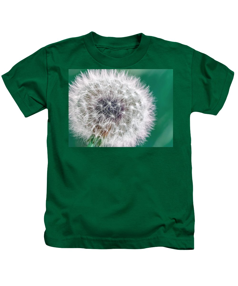 Dandy Lion Kids T-Shirt featuring the photograph Abstract Dandy Lion - Teal by Rohane Hamilton