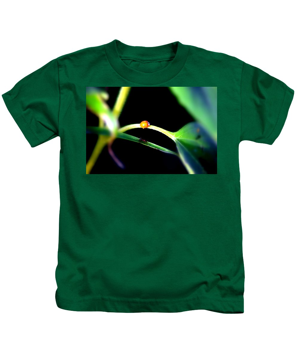 Ant Kids T-Shirt featuring the photograph Parallel Paths by Deborah Irving