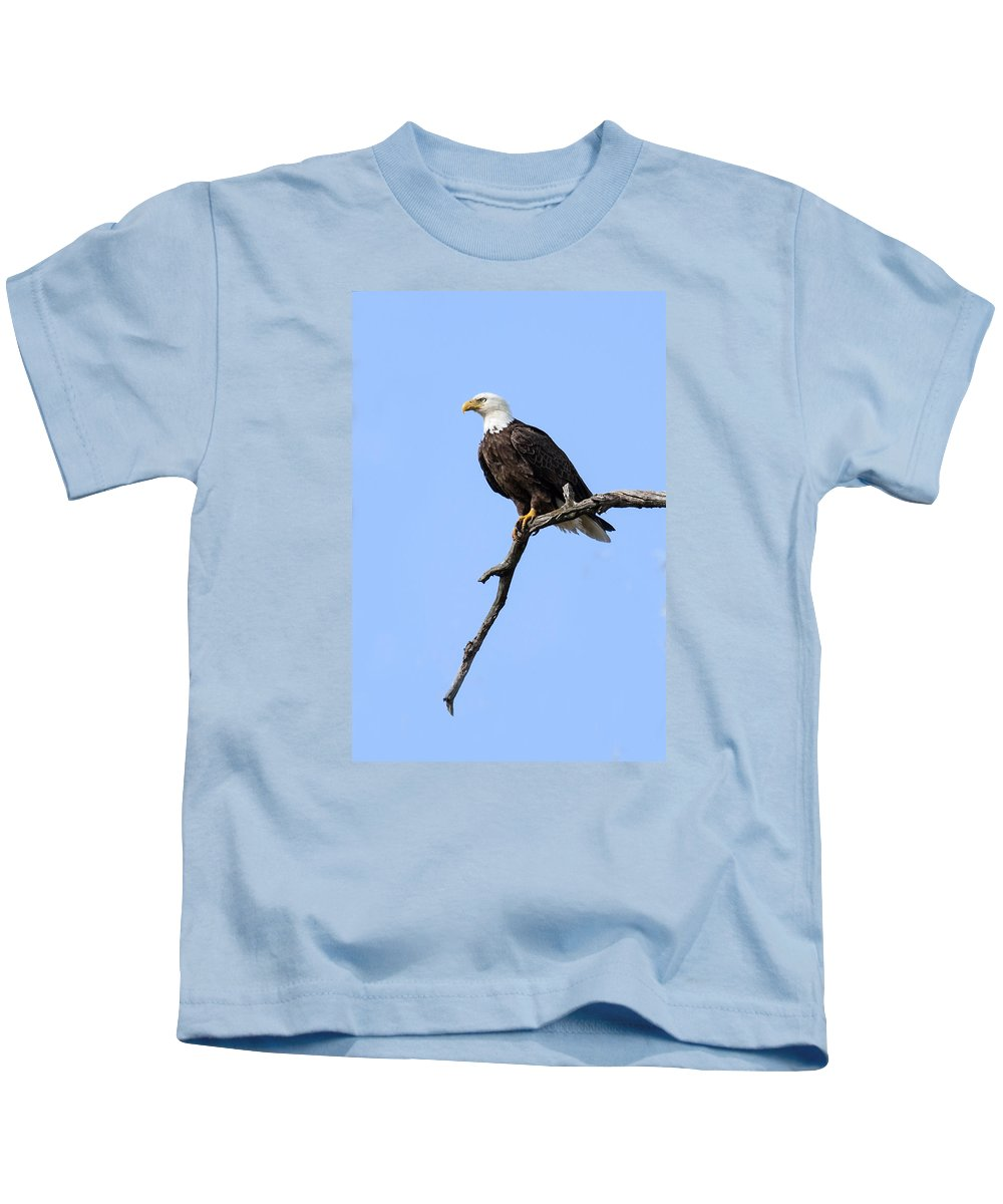 Eagle Kids T-Shirt featuring the photograph Bald Eagle 6 by David Lester