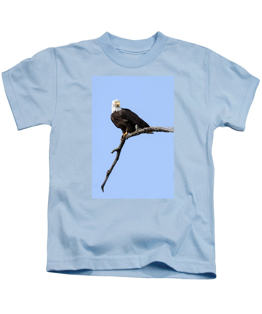 Eagle Kids T-Shirt featuring the photograph Bald Eagle 7 by David Lester