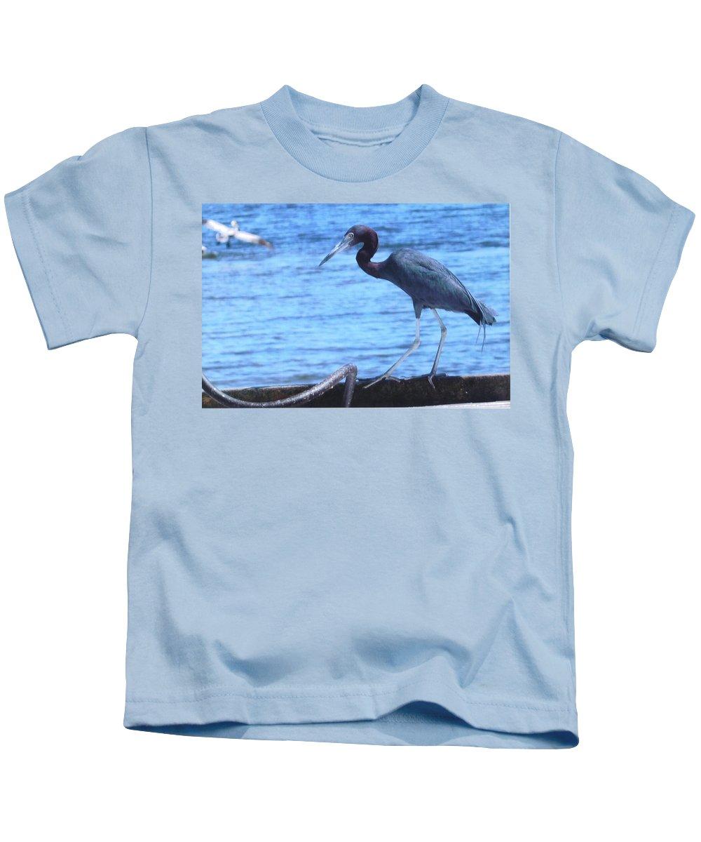 Matlache Fl. Kids T-Shirt featuring the photograph Blue Heron by Robert Floyd