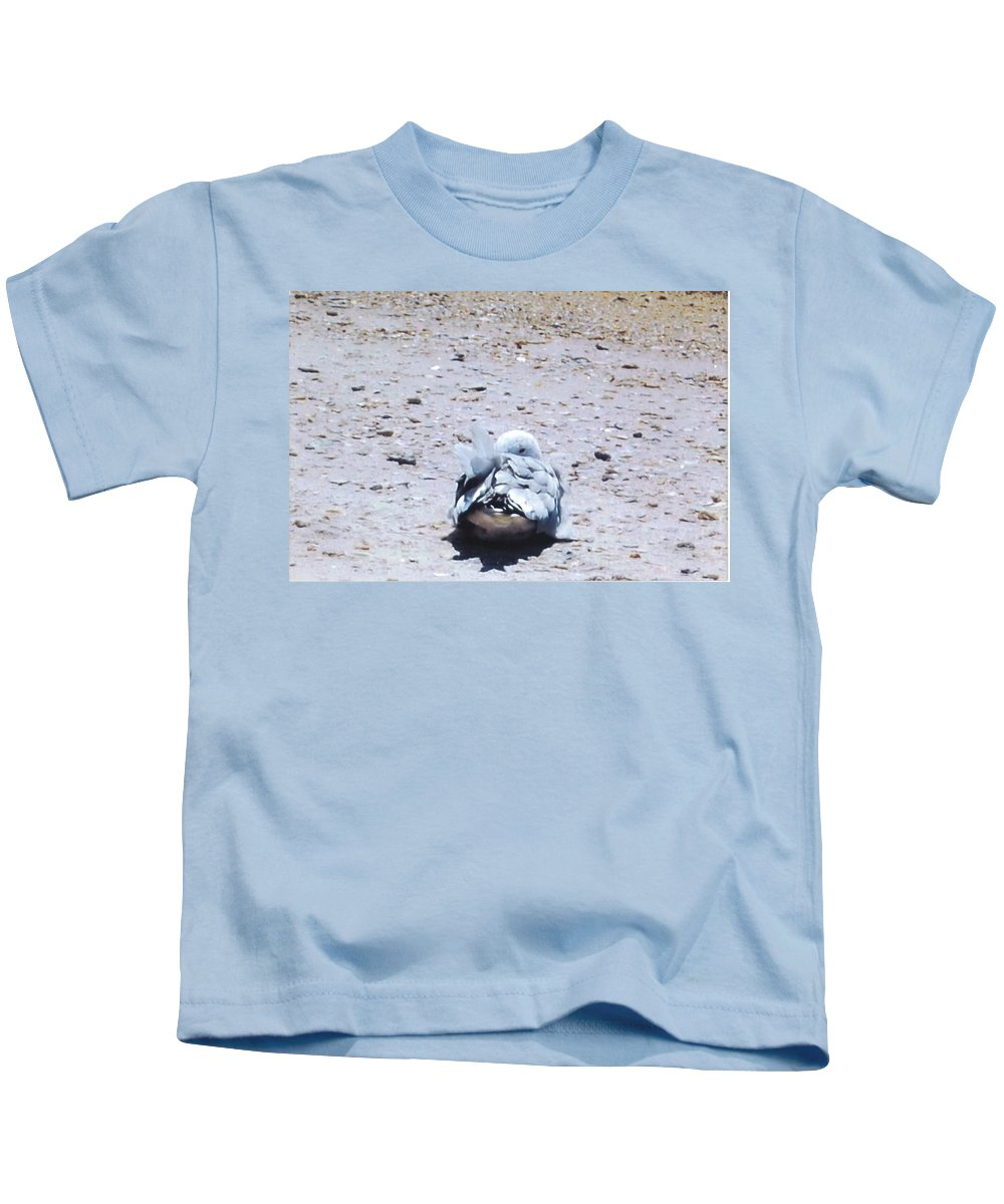 I'm Watching You. Kids T-Shirt featuring the photograph Seagull by Robert Floyd