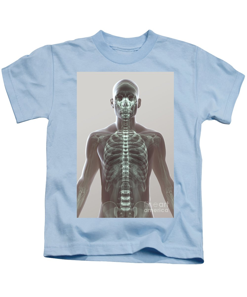 3d Visualisation Kids T-Shirt featuring the photograph X-ray Skeleton by Science Picture Co