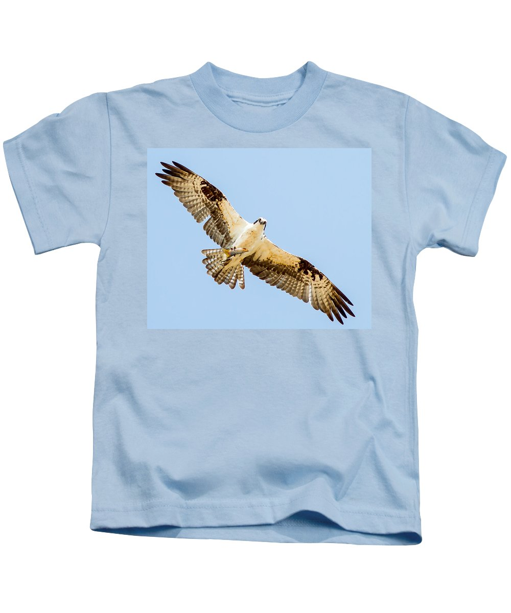 Doves Kids T-Shirt featuring the photograph An Osprey Feeding On A Trout by Brian Williamson