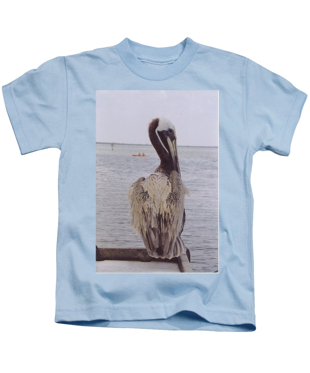 Boat Dock At Matlacha Kids T-Shirt featuring the photograph Male Pelican by Robert Floyd
