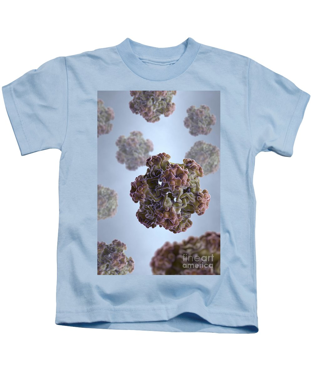 Sickness Kids T-Shirt featuring the photograph Papillomavirus by Science Picture Co