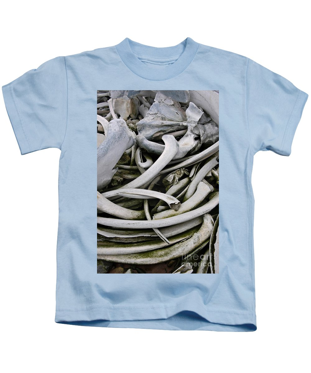 Whale Kids T-Shirt featuring the photograph Whale Bones by John Shaw