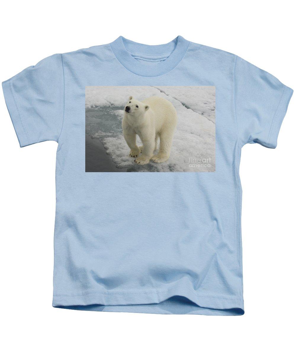 Polar Bear Kids T-Shirt featuring the photograph Polar Bear Crossing Ice Floe by John Shaw
