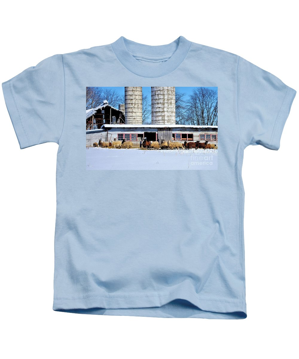 Wool Kids T-Shirt featuring the photograph A Sheepish Winter's Day by Patti Smith