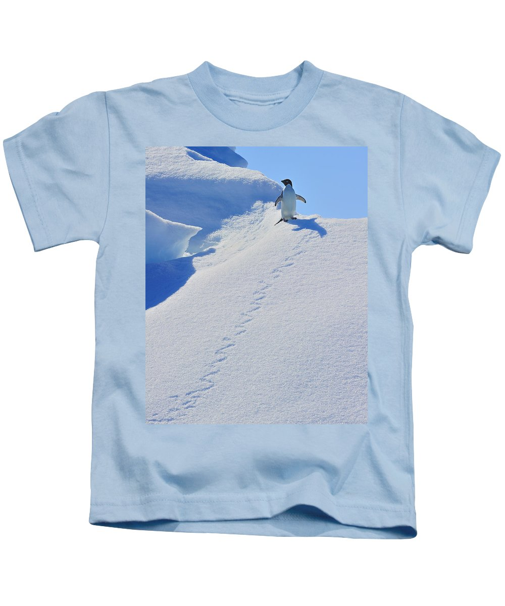 Adelie Penguin Kids T-Shirt featuring the photograph Adelie Penguin On Bergie Bit by Tony Beck