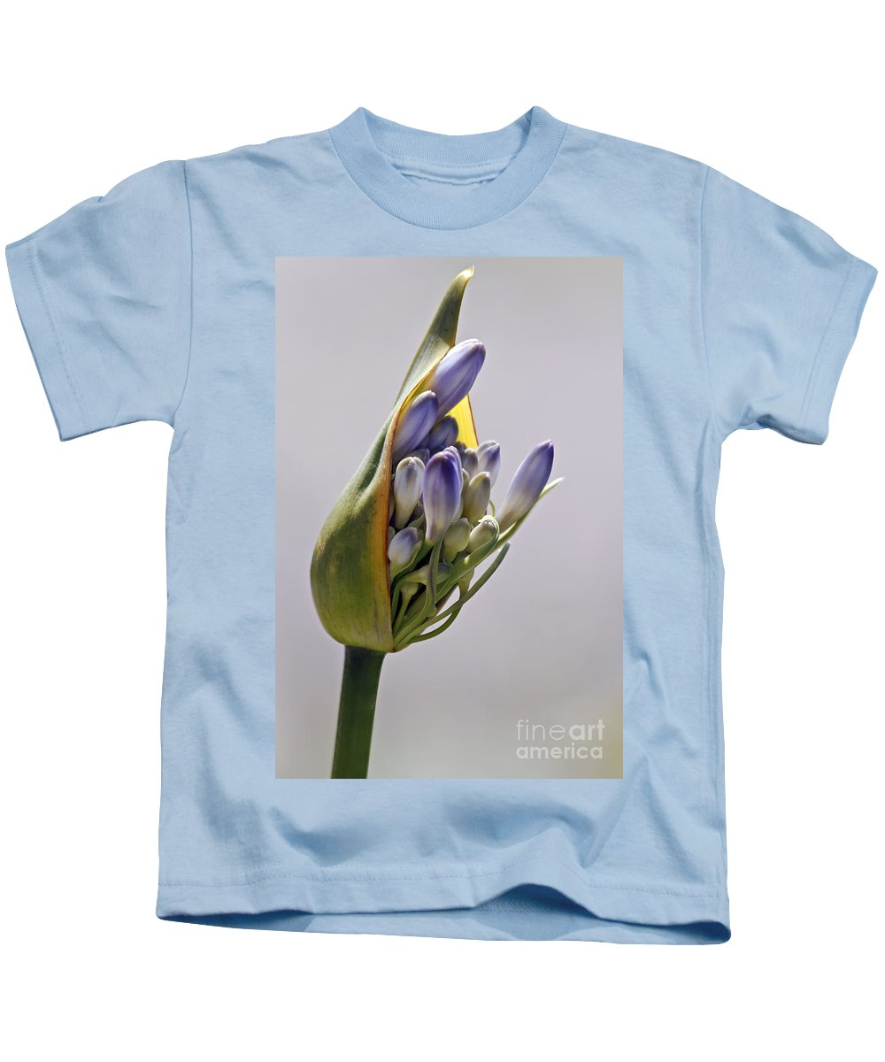 Kate Brown Kids T-Shirt featuring the photograph Agapanthus Blue by Kate Brown