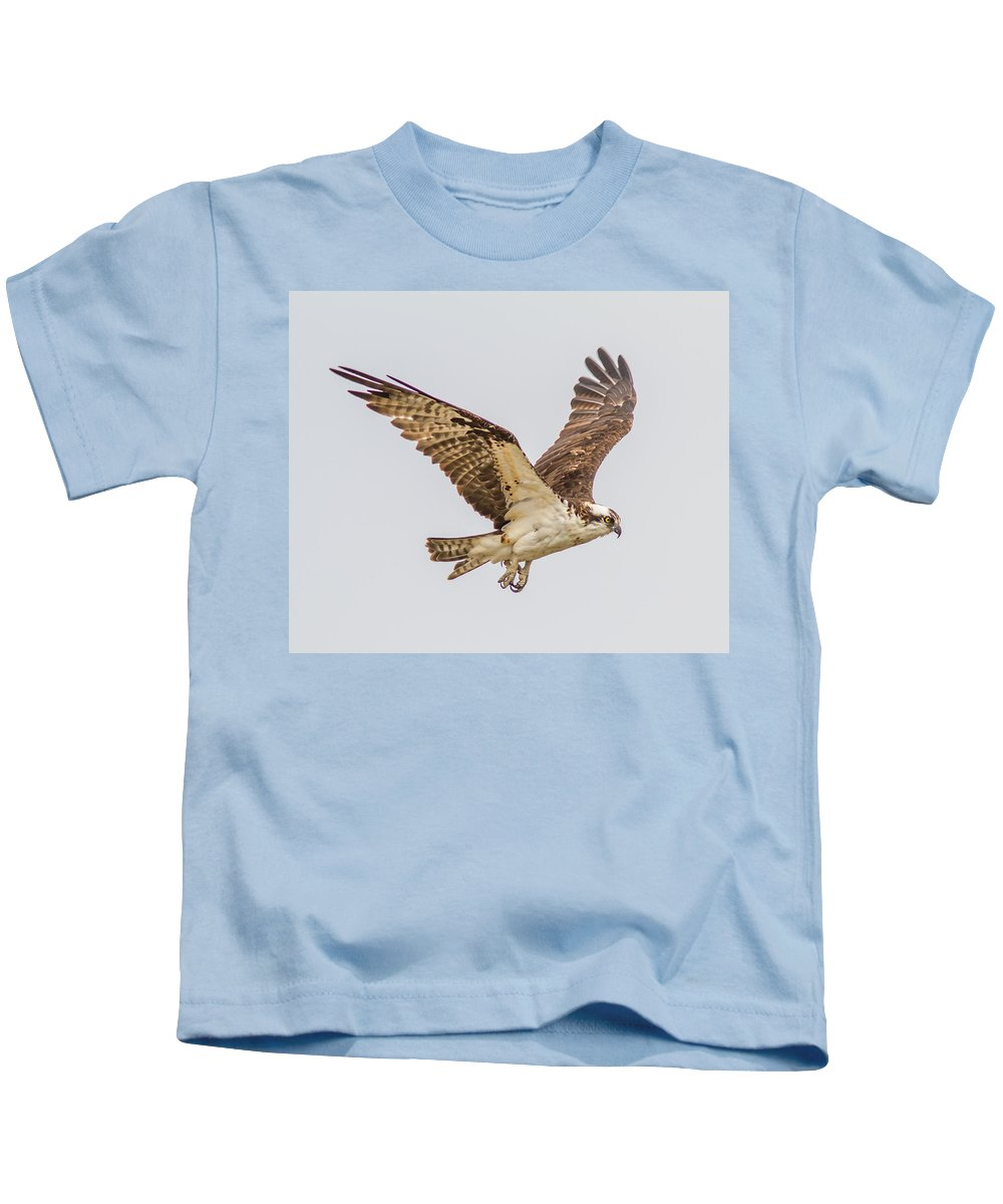 Wild-life Kids T-Shirt featuring the photograph An Osprey by Brian Williamson