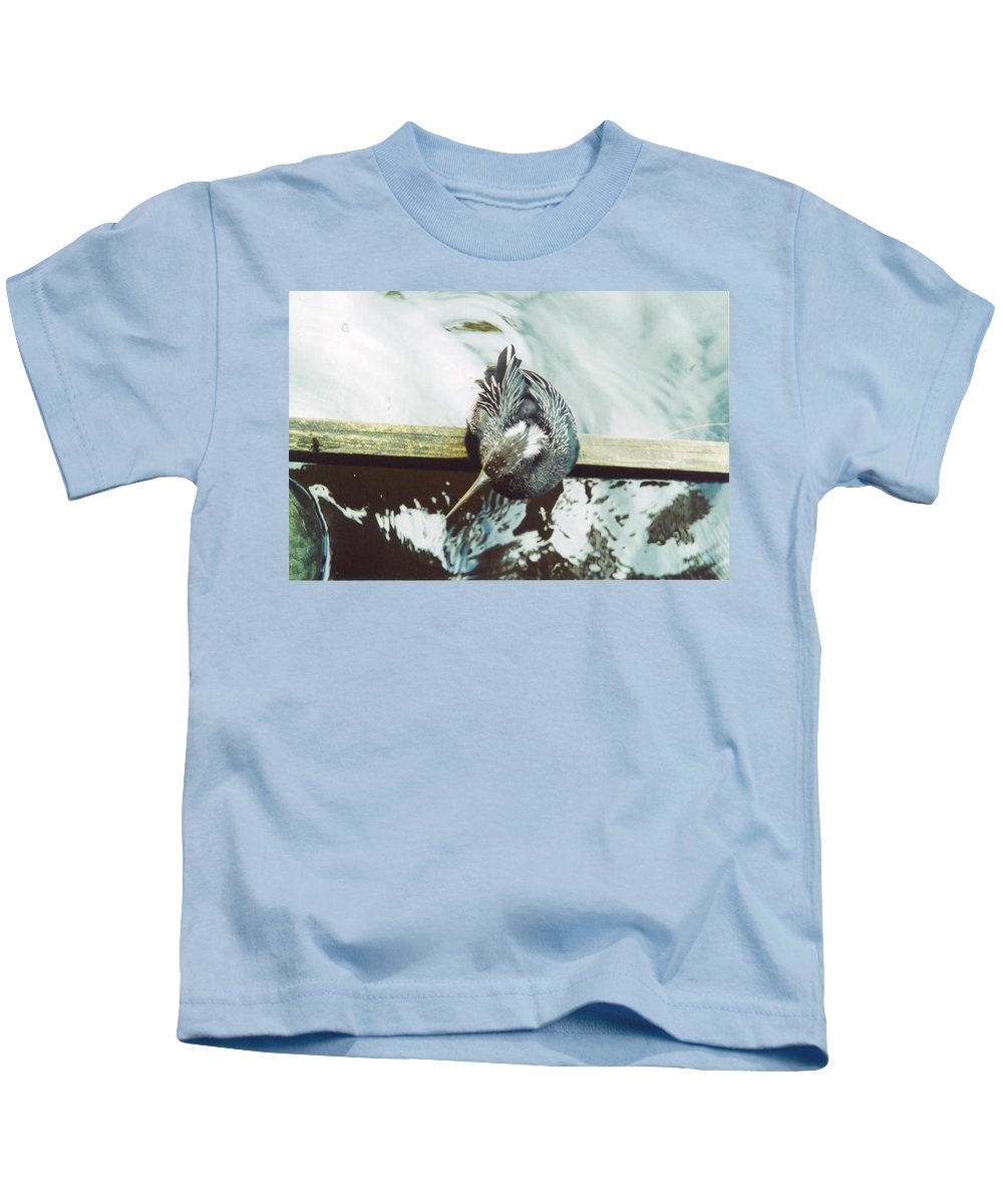 Lakes Park In Ft.myers Kids T-Shirt featuring the photograph Anhinga Or Snakebird by Robert Floyd