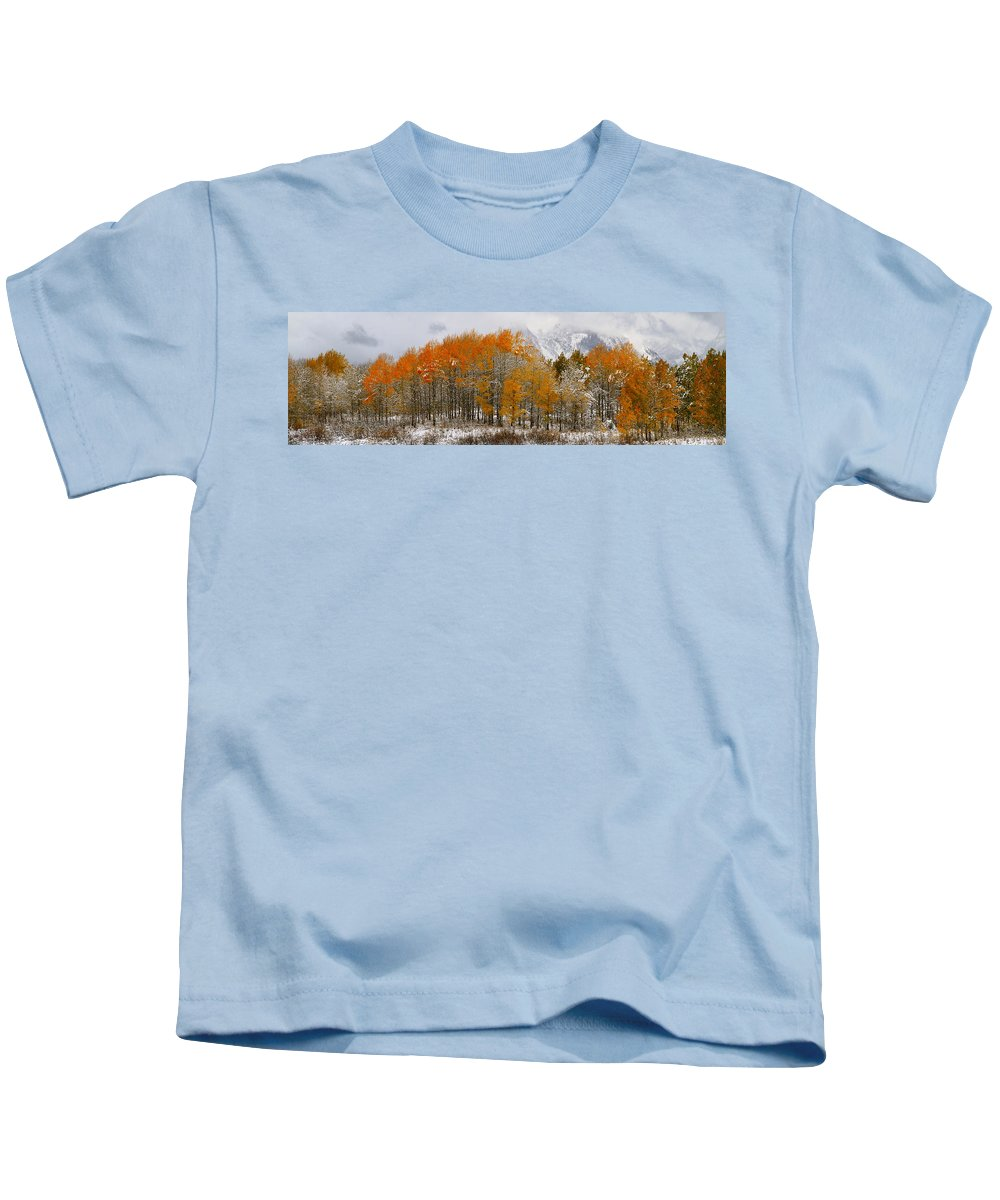 Trees Kids T-Shirt featuring the photograph Aspen Grove Along The Snake River Grand Teton National Park by Ed Riche